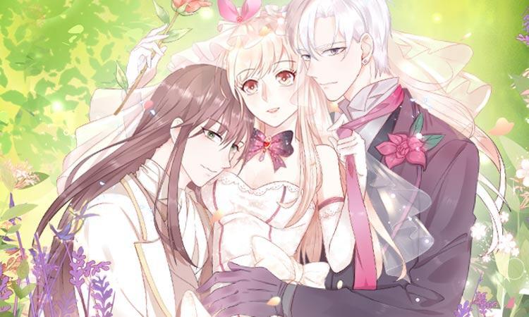 他们都想嫁给我怎么办?