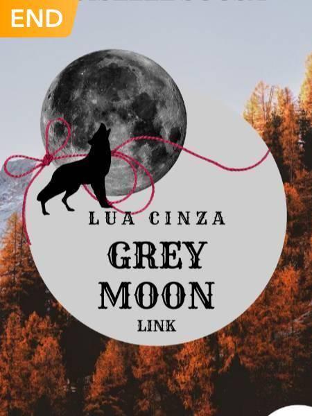 Lua Cinza - Grey Moon