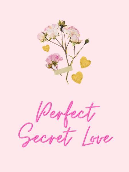 Perfect Secret Love