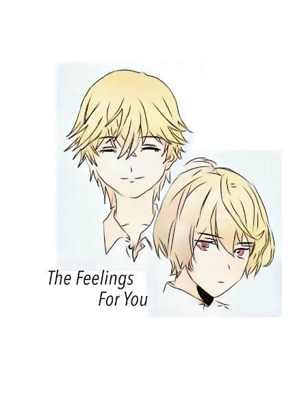 The Feelings for you