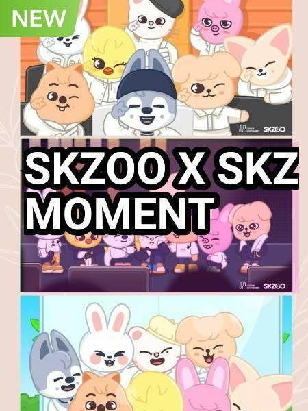 Skzoo X SKZ Moments