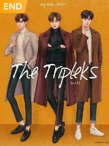 The Triplek's