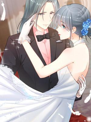 Pernikahan Tersembunyi