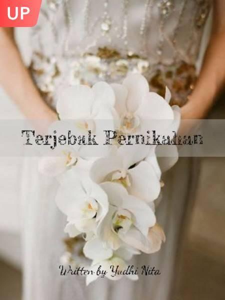 Terjebak Pernikahan