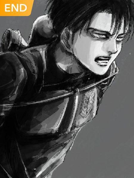 Levi X Y/N (Attack On Titan)