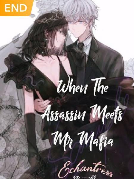 •When The Assasin Meets Mr Mafia•