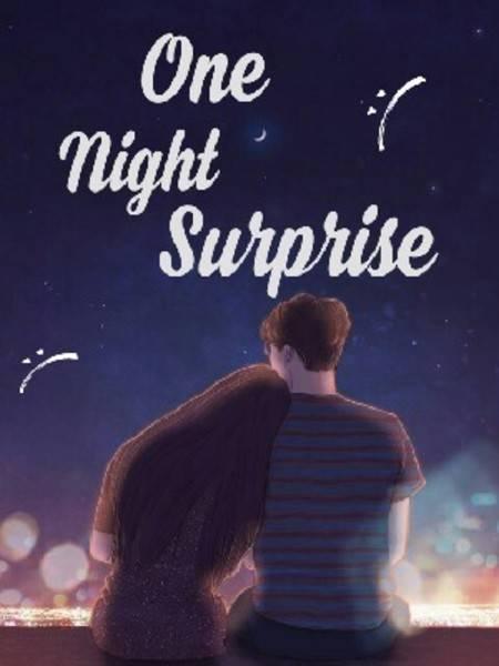 One Night Surprise