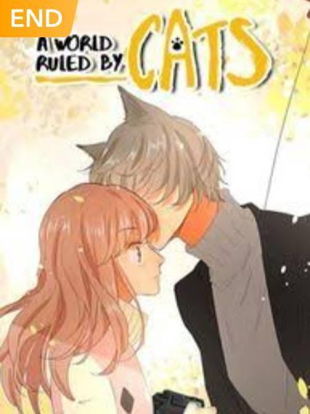 Um mundo governado por gatos