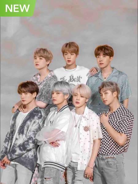 BTS ( The Lucky Idol Fan )