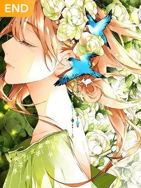 Amor Tem Cor de Flor de Cerejeira