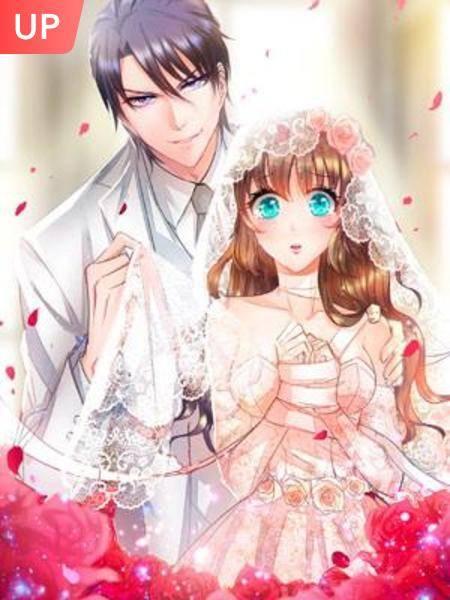 Pernikahan Hangat